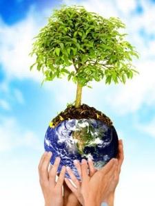 medio-ambiente1
