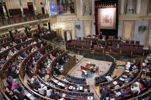 89414-sesion_plenaria